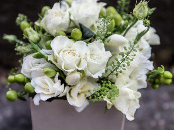 Cutie din alb imaculat